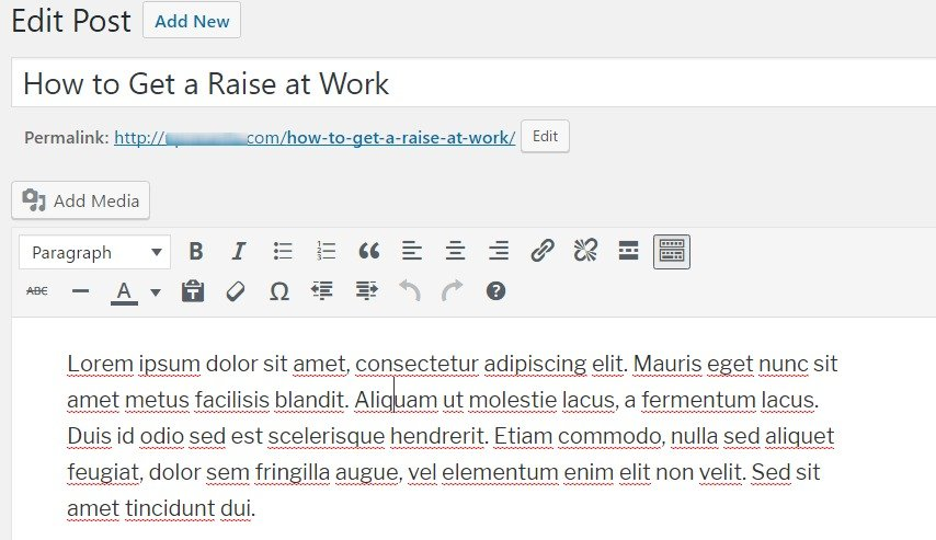 default visual editors in WordPress